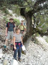 Anne, David, Roger und Alan überprüfen Peters Beschreibung der Umrundung der Serra Oseli