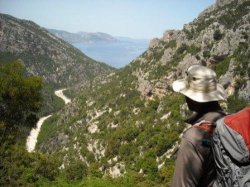 Paddy overlooking the Codula di Sisine as he documented walks for his Sardinia walking guidebook